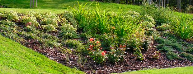 Palko Plant - Referenciák