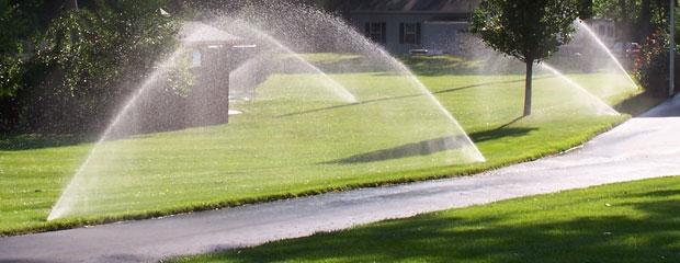 Palko Plant - Irrigation Systems
